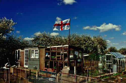 Allotment 4: photo by Martin Slavin
